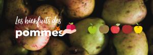 bannière bienfaits des pommes