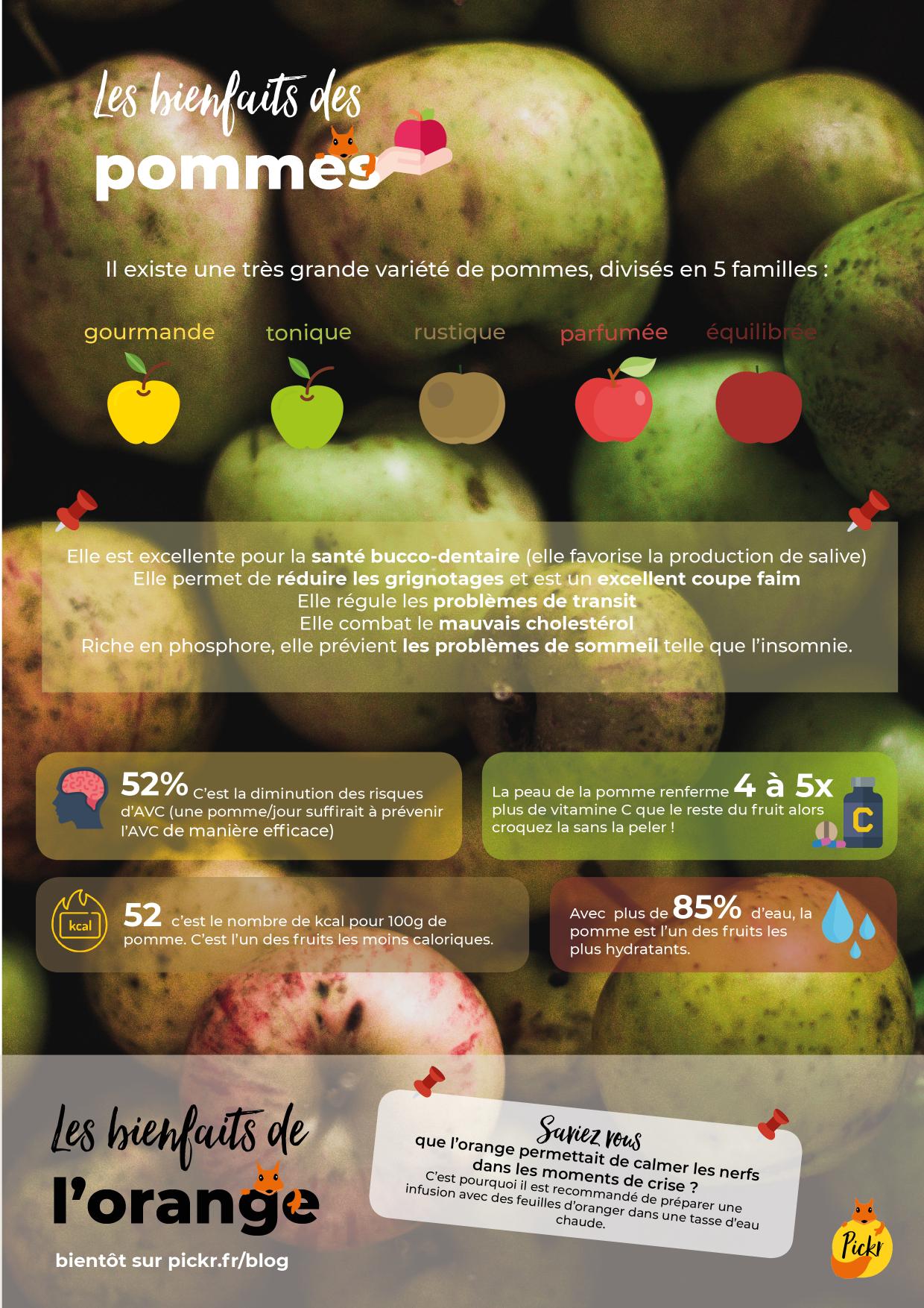 Les bienfaits des oléagineux infographie